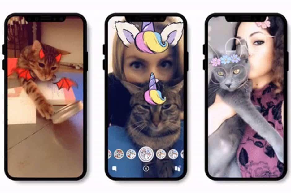 Snapchat Lens voor katten