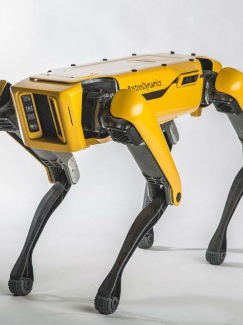 Spot de robot danst