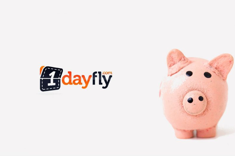 1dayfly is terug