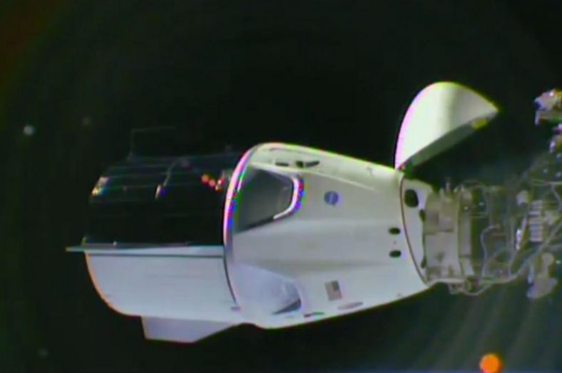 Space X Crew Dragon